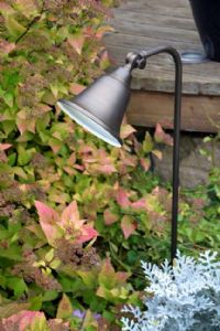 Charleston Belle 12 volt Adjustable Spredlight - Brass